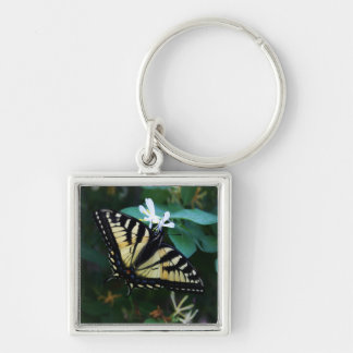 Yellow Swallowtail Keychain