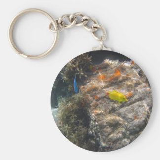 Yellow Tang & Blue Damsel Basic Round Button Keychain