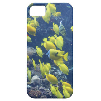 Yellow tang fish tank color photo iphone 5 case
