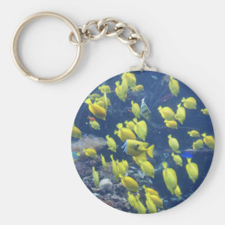Yellow tang fish tank color photo keychain
