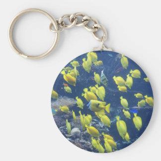 Yellow tang fish tank color photo keychain
