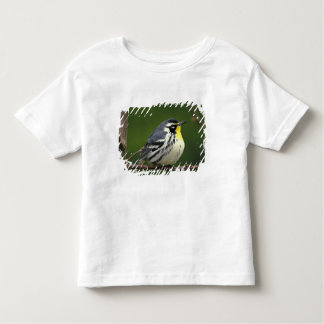 Yellow-throated Warbler (Dendroica dominica) Toddler T-shirt