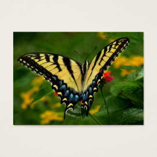Yellow Tiger Swallowtail Butterfly ATC Card
