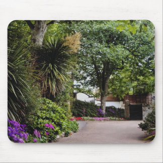 Yellow Town gardens at St. Ives, Cornwall, England Mouse Pads