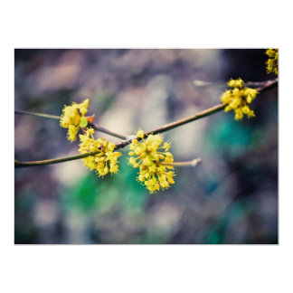 Yellow tree flowers 6.5x8.75 paper invitation card