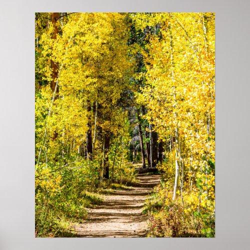 Yellow Tree Road // Hiking in Autumn
