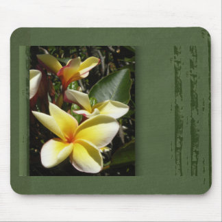 Yellow tropical plumeria flower mouse pad