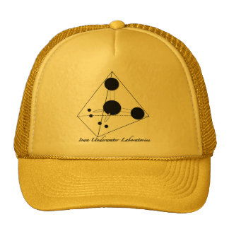 Yellow Trucking Cap Trucker Hat