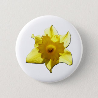 Yellow Trumpet Daffodil 1.0 Button
