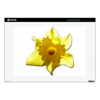 """Yellow Trumpet Daffodil 1.0 Skins For 15"""" Laptops"""