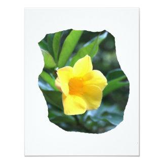 Yellow Trumpet Flower Photograph Custom Announcements