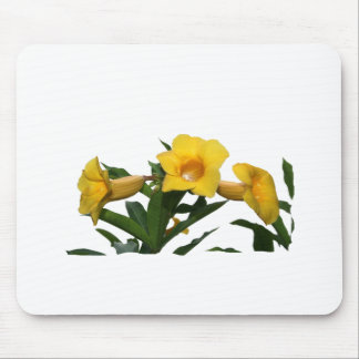 Yellow Trumpet Flowers cutout photo Mouse Pads
