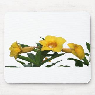 Yellow Trumpet Flowers cutout photo Mousepads