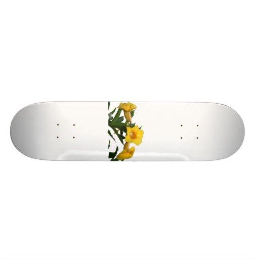 Yellow Trumpet Flowers cutout photo Skateboard