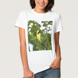 Yellow Trupial bird Tee Shirt