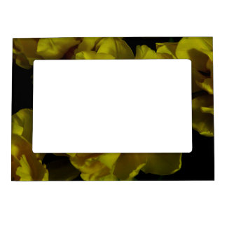 Yellow Tulip Art Magnetic Frame
