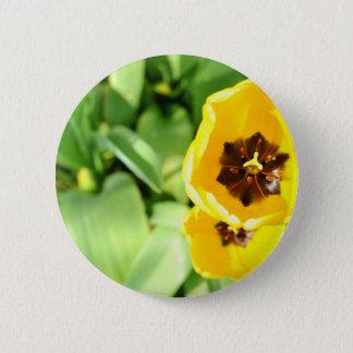 Yellow tulip button