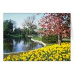 yellow Tulip Festival, Fifth Avenue, Ottawa flower Greeting Card