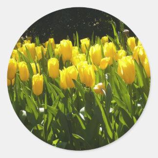 Yellow Tulip Garden Classic Round Sticker