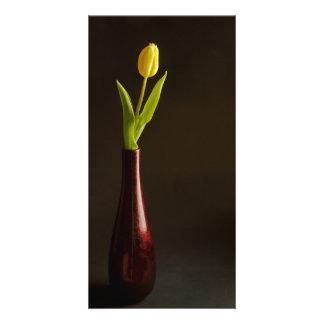 yellow tulip in dark red vase card