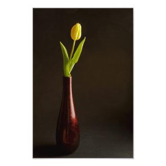 Yellow tulip in dark red vase photo print