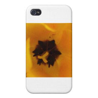 Yellow Tulip iPhone 4/4S Covers