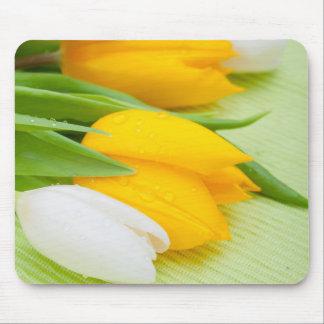 Yellow tulip mousepads
