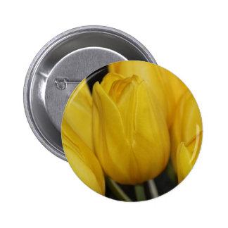 Yellow Tulip photo Pins