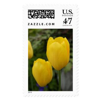 Yellow Tulip Postage