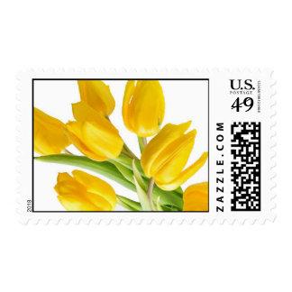 Yellow Tulip Postage Stamp