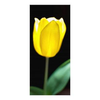 Yellow tulip rack card