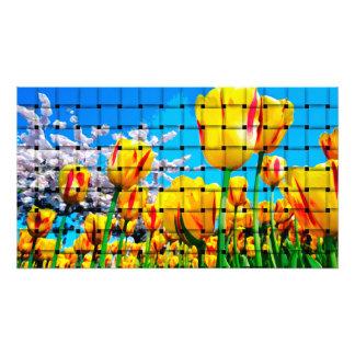 Yellow Tulip Weave Photograph