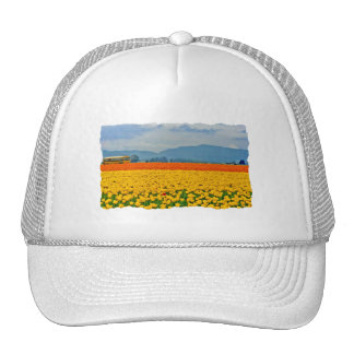 Yellow Tulips and School Bus Trucker Hat