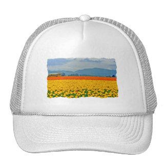 Yellow Tulips and School Bus Trucker Hat