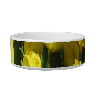 Yellow tulips bowl