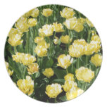 Yellow Tulips Dinner Plate