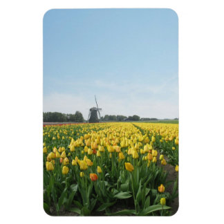 Yellow Tulips Flowers Field & Windmill Holland Rectangular Photo Magnet
