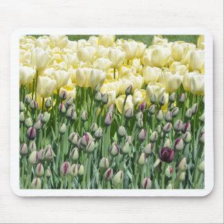 Yellow Tulips Mousepads