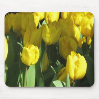 Yellow Tulips Mouse Pad