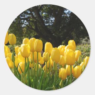 Yellow Tulips Stickers
