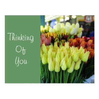 Yellow Tulips-Street Market Postcard