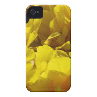 Yellow Tulips Through Sunbeams iPhone 4 Cover