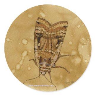 Yellow Underwing Moth Sticker sticker