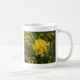 Yellow Vetchling Coffee Mug