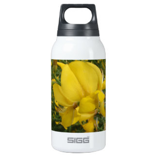 Yellow Vetchling Insulated Water Bottle