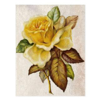 Yellow Vintage Rose Postcard