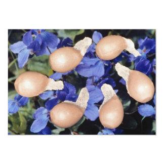 Yellow Violet seeds (Viola papilionacea) flowers Card