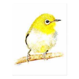 Yellow Viro Post Cards