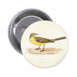 Yellow Wagtail Button