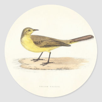Yellow Wagtail Sticker
